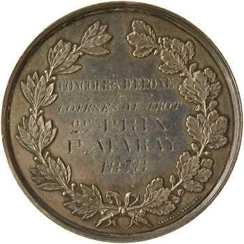 IIIe République, Comice agricole de Seine et Oise, concours hippique d'Epône, 1878 Paris