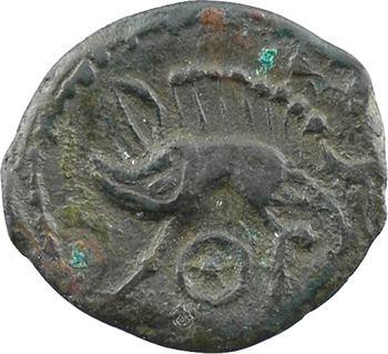 Véliocasses, bronze au sanglier type de Saint-André-sur-Cailly, c.60-50 av. J.-C