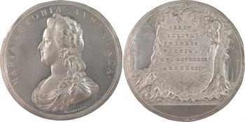 Marie-Antoinette, victime des factieux, paire de clichés en étain, par Baldenbach, 1793 Vienne