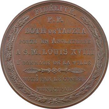 Entrée du duc d'Angoulême à Bordeaux par Andrieu, 1814 Paris