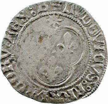 Louis XI, blanc au soleil, Bourges