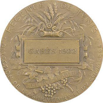 Tunisie, Régence de Tunis, Agriculture et Commerce, par Alphée Dubois, 1922 Paris